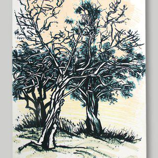 Three Junipers art for sale