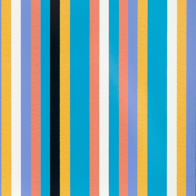 main work - Bridget Riley, Serpentine