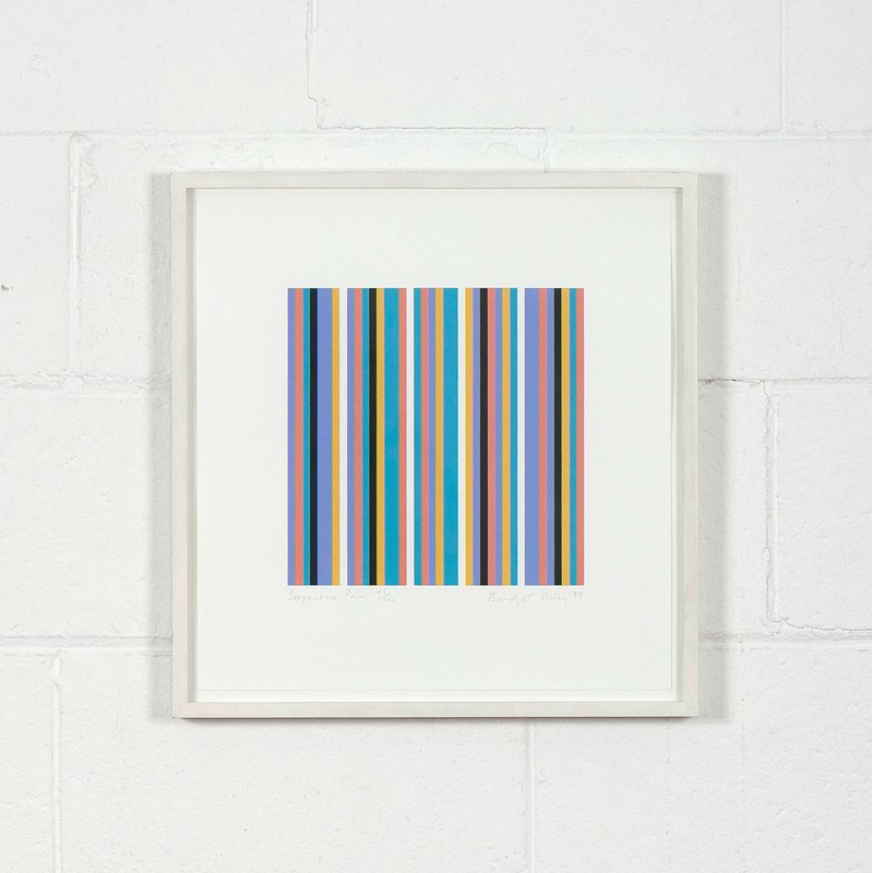 view:12376 - Bridget Riley, Serpentine -