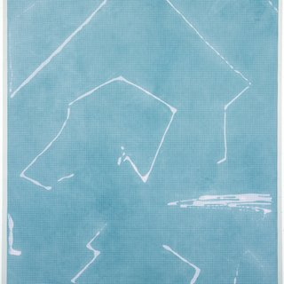 Cheryl Donegan, Untitled (blue and pink object mapping)