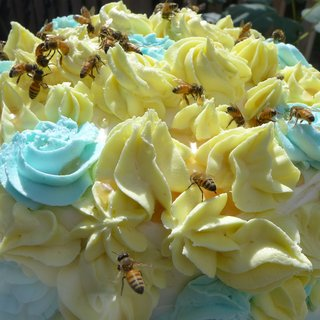 Honey Bee Cake art for sale