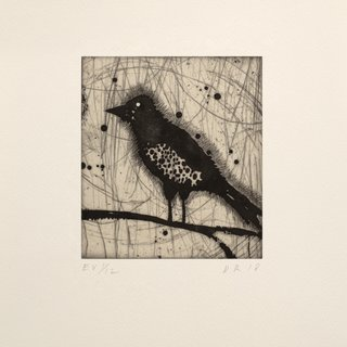 Little Harried Bird [e.v. 1/12] art for sale