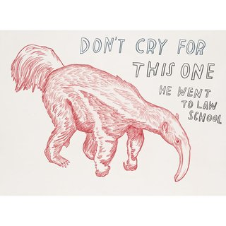 Untitled (Don't Cry for this One, He Went to Law School) art for sale
