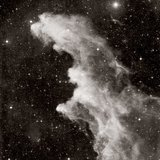 David Malin, IC 2118, the Witch's Head nebula, in Eridanus
