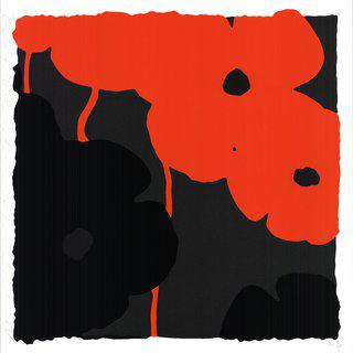 Red & Black Poppies II art for sale