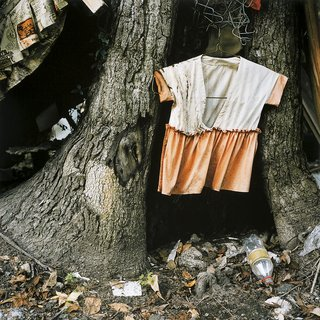 Child's Dress in Tree Trunk art for sale