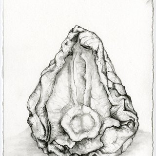 Dried Pear 2 art for sale