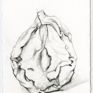 Dried Pear 3 art for sale