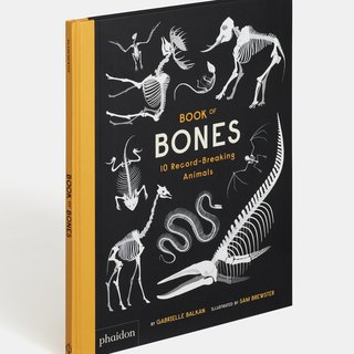 Book of Bones art for sale