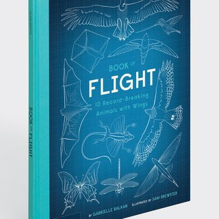 Book of Flight - 10 Record-Breaking Animals with Wings art for sale