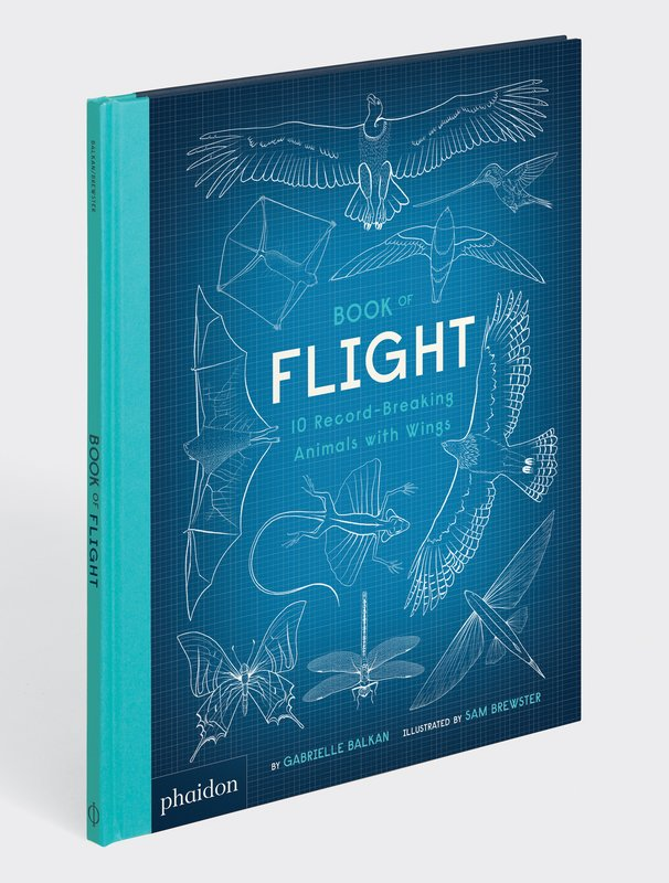 main work - Phaidon, Book of Flight - 10 Record-Breaking Animals with Wings