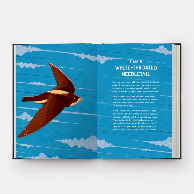 view:31912 - Phaidon, Book of Flight - 10 Record-Breaking Animals with Wings -