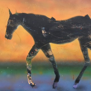 The Foal art for sale