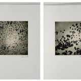 Georg Herold, from the Kaviar series: I, II, III and IV