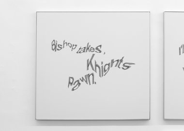 work by Gisela Motta & Leandro Lima - Captcha 08 - Knights pawn