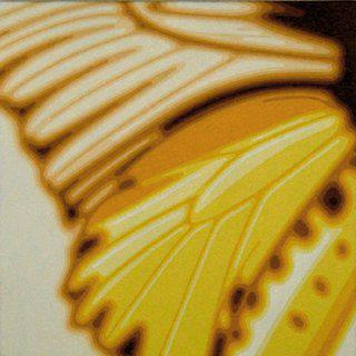 Butterly Wing art for sale