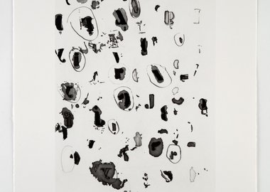 Glenn Ligon - Some Circled, Some Not