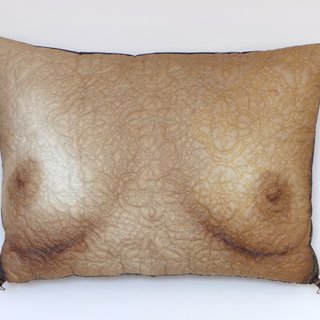 Chest Pillow art for sale