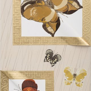Unique Janus Butterflies 8 art for sale