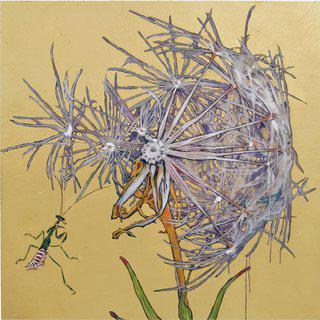 Dandelion with Praying Mantis, ed. 2/9 art for sale