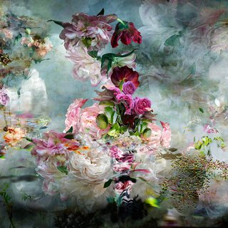 Isabelle Menin, song #4 - Abstract floral landscape photography white and pastel color