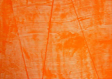 James Collins - Untitled (Orange 36x48)