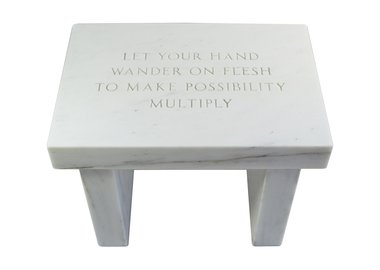 Jenny Holzer - Selection from Survival: Let your hand wander on flesh to make possibility multiply