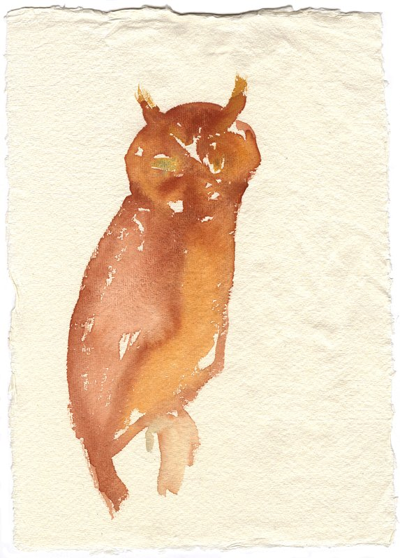 Mountain Owl art for sale