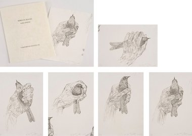 work by Kiki Smith - Bird in Hand