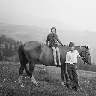 Siblings on polonyna (mountain pasture) above the village art for sale