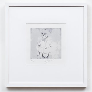 Luc Tuymans - Dead Skull for Sale   Artspace