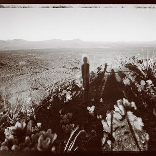 Mark Klett, Self portrait with Saguaro about my same age, Pinacate Sonora 10/29/99