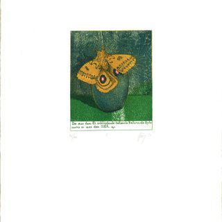 Von Raupen und Schmetterlingen, Frei erfundene Stadien der Metamorphose (From Caterpillars to Butterflies, The Fictitious Stages of Metamorphosis) art for sale