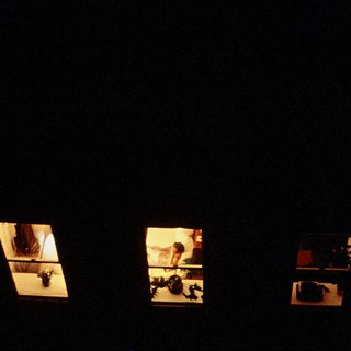 Maxi Cohen, Out My Back Window II, 1981