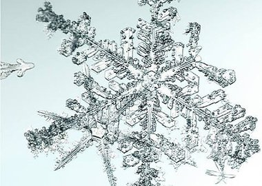 Doug and Mike Starn - Untitled (Snowflake)