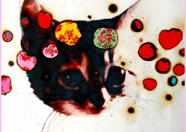Miyoshi Barosh - I Love Kitties (red)