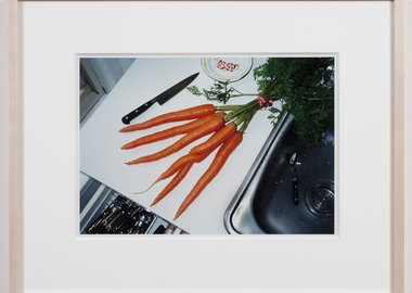 work by Mona Hatoum - A bunch of carrots (New York)