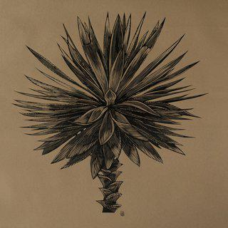 Untitled (Palm) art for sale