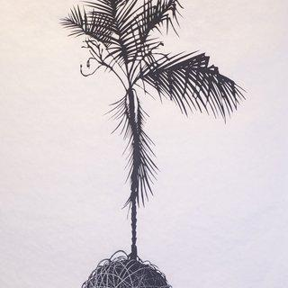 The Islands I Invent Everyday (Palm) art for sale