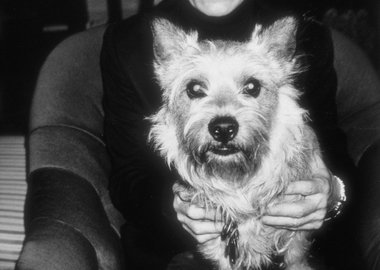 Paige Powell - Andy Warhol with Judith Leiber's dog Sterling