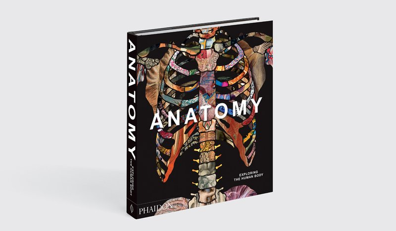 by phaidon - Anatomy: Exploring the Human Body