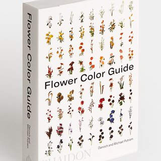 Flower Color Guide art for sale