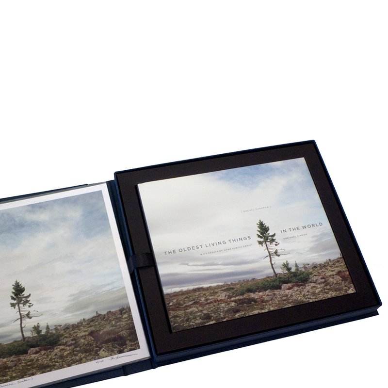 main work - Rachel Sussman, The Oldest Living Things in the World Limited collectors edition with book box, first edition book, and print of Spruce Gran Picea #0909-11A07 (9,550 years old; Dalarna, Sweden)
