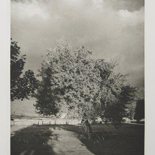 Robert Adams, Turning Back