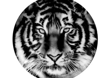 work by Robert Longo - Tiger (Set of 2 Plates)