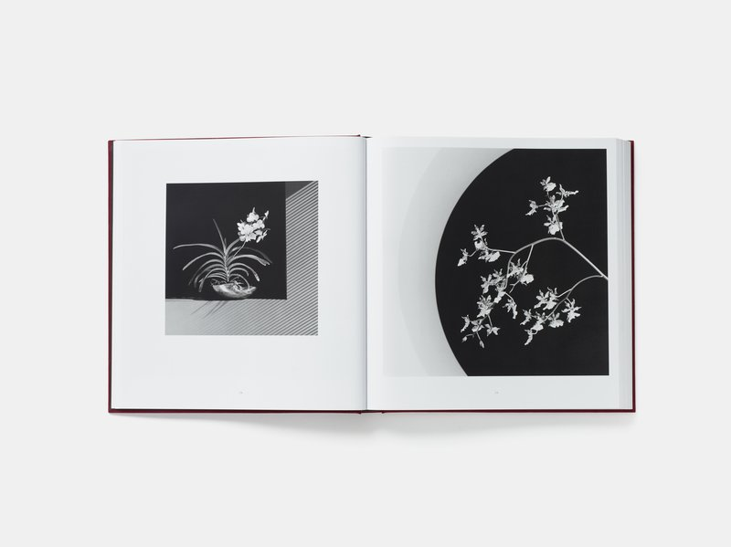 Robert Mapplethorpe, Mapplethorpe Flora: The Complete Flowers -
