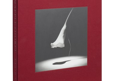 Robert Mapplethorpe - Mapplethorpe Flora: The Complete Flowers