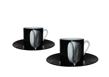 Robert Mapplethorpe - Arum (Espresso Set)