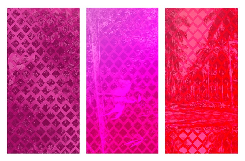 Sara Jimenez - Tropical Bounds (Triptych) for Sale   Artspace