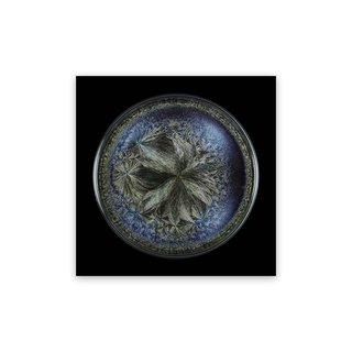 Morphogenetic Field - Beluga Caviar (Medium) art for sale